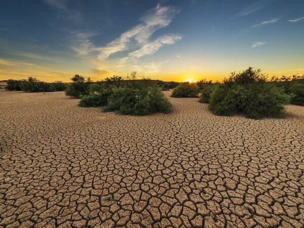 Land Degradation: A Serious Threat to India's Food Security and Climate Change